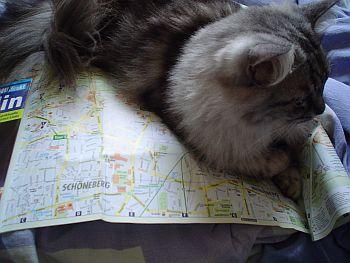 berlin_stadtplan.jpg