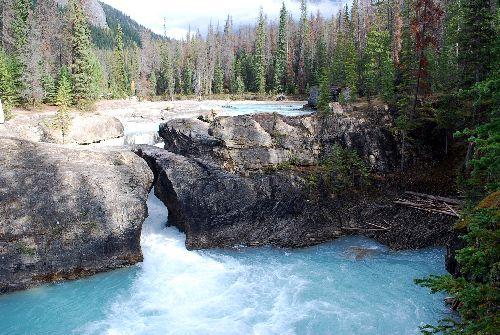 1Kicking Horse River