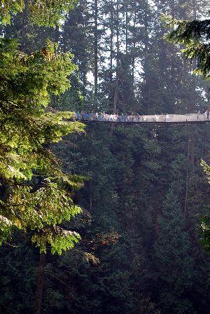 Capilano Suspension Bridge7