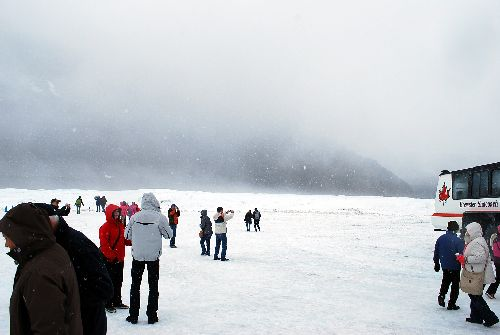 Columbia Icefield4