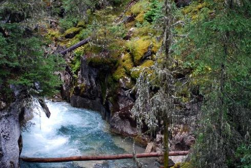 Johnston Canyon Trail 3