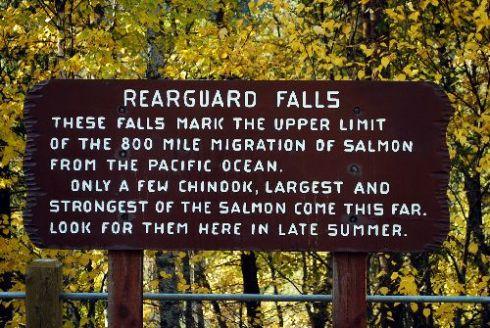 Rearguard Falls1
