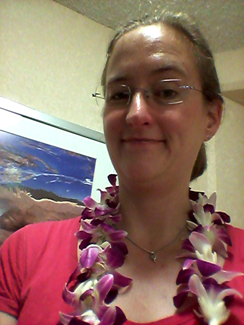 Ankunft Waikiki4