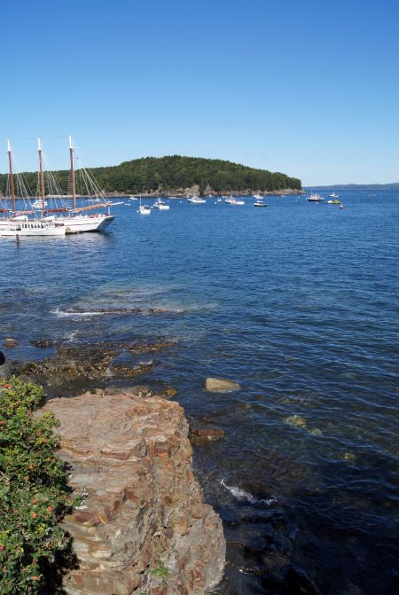 Bar Harbor8