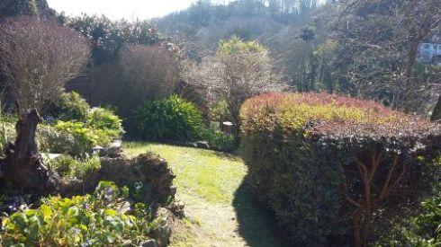 12 Garten