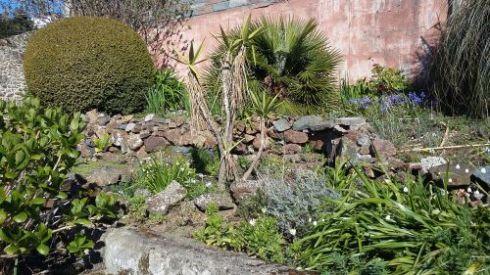 9 Garten