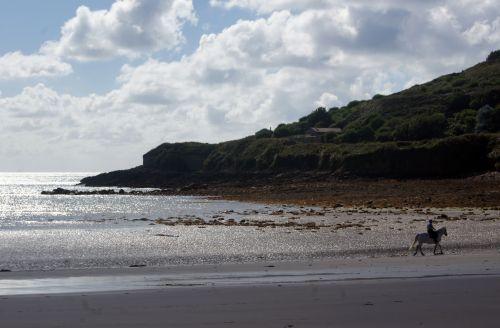 beach-day11