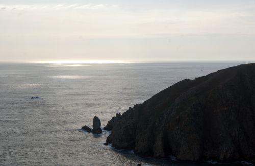 gannet9